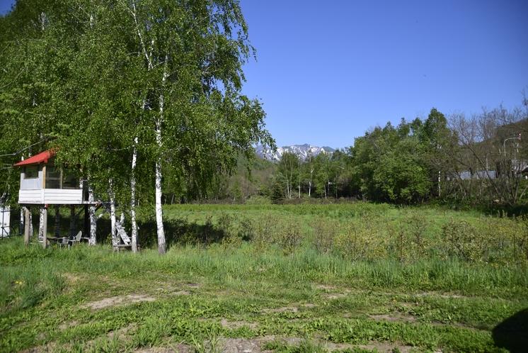 隣接する広大なベリー園で散策と季節のベリー摘みが楽しめます。