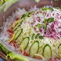 バイキング料理イメージ 新鮮サラダ