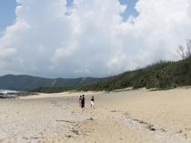 ビラビーチ(当館から歩いて5分)。奄美ならではの自然の美しさをお楽しみください。