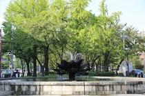 近隣風景・東本願寺噴水