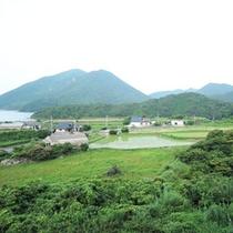 大自然と共にのんびり島時間をお過ごしください。。