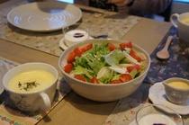 富良野の野菜たっぷりサラダ