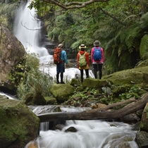 秘境ナーラの滝 ダイナミック西表島アドベンチャー
