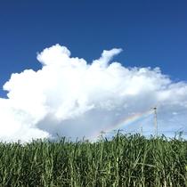 *客室からの眺望は虹が見えることも・・・☆