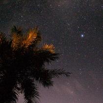 *景観一例/夜は満天の星空!星座盤をご準備しての天体観測もオススメです♪