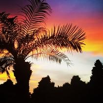 *【周辺】/天気のいい日は当館から鮮やかな夕日がご覧いただけます!