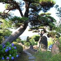 ◇お庭散策ポイント