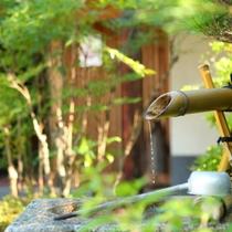 ◇玄関脇の蹲い。夏は涼しげな風情に。