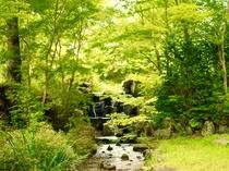 【周辺】自然に囲まれて癒しのひと時を過ごしませんか?