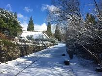 【周辺】寒い日はとても綺麗な青空が見られます♪