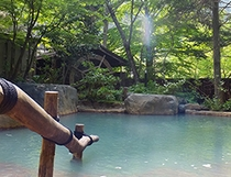 まさに森林浴-5月の殿方露店風呂