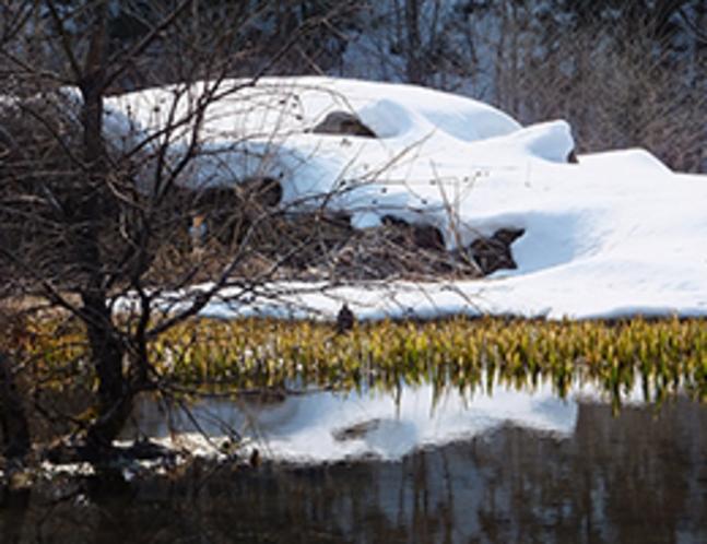 3月17日川面にも春の予感です
