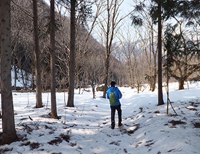 春早い福地の雪原をかんじきを付けて出かけました