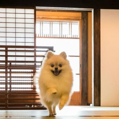 【楽天トラベルセール】<愛犬ご宿泊・1匹無料>城下町の風情漂う分散型ホテルでリフレッシュ 2食付