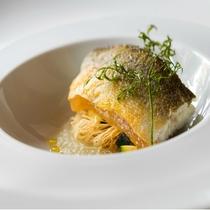 旬の鮮魚をお楽しみいただけるお魚料理。