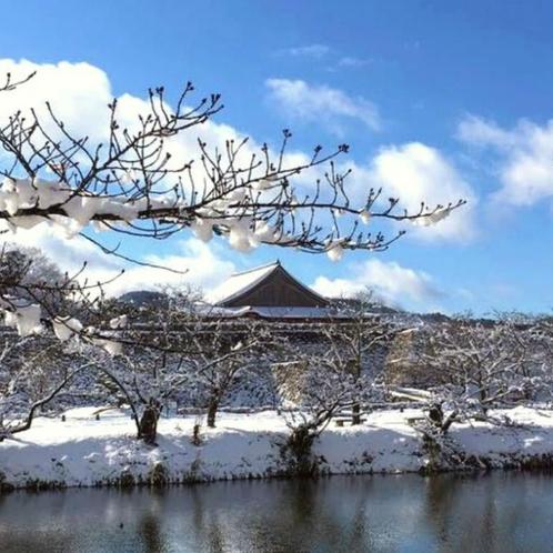 冬の丹波篠山は、篠山城跡の雪化粧で美しい景色が広がっています。