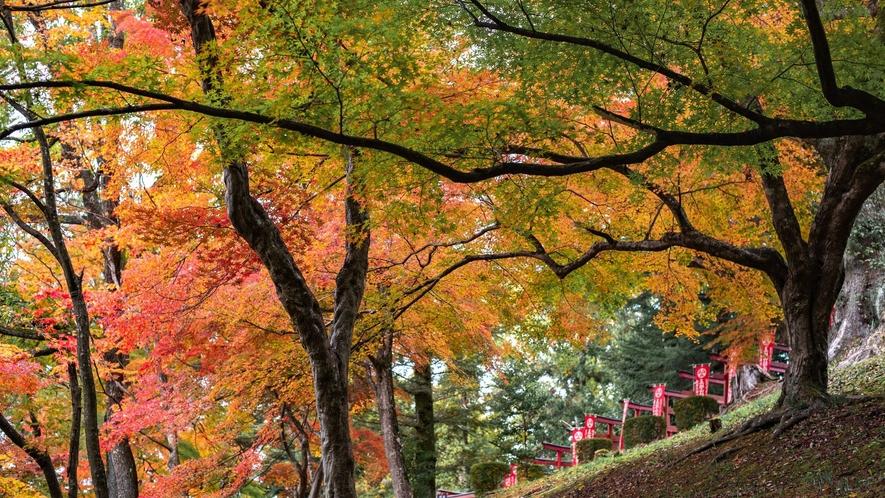 ホテルから徒歩でいける篠山の紅葉名所、王地山まけきらい稲荷。