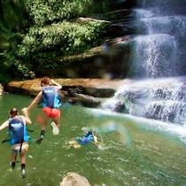 ジャングルの奥地「ナーラの滝」01