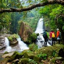 ジャングルの奥地「ナーラの滝」02
