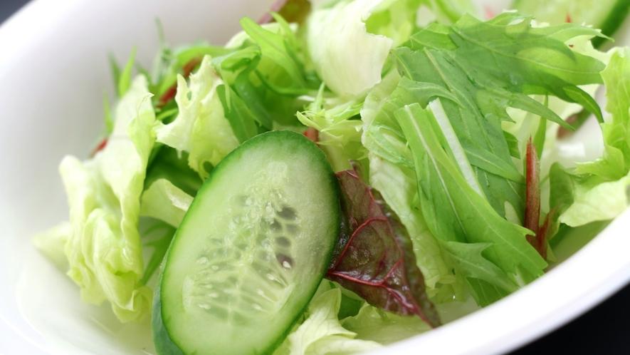 日替わり料理洋食。季節野菜のサラダ