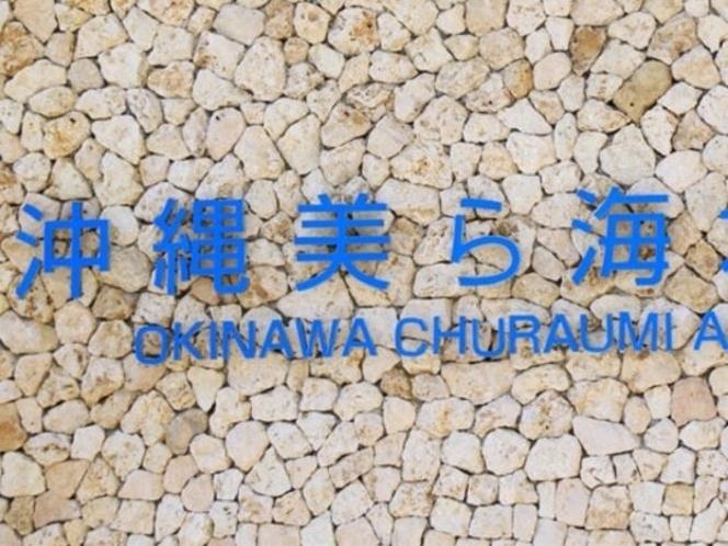 沖縄を代表する人気スポット「美ら海水族館」【車で約75分】
