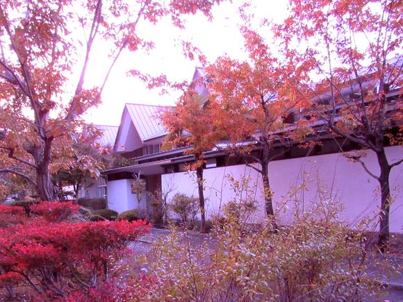 *エントランス 秋の風景