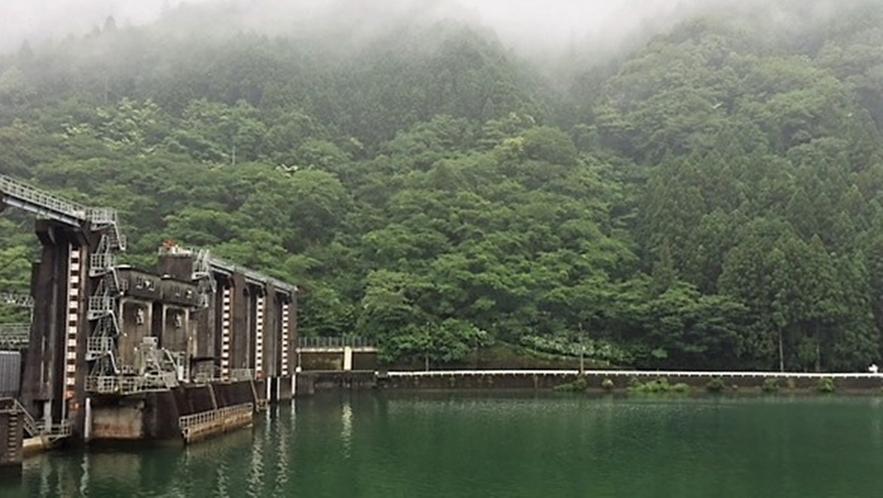 *川口ダムミュージアム向かいの山側一面にあじさいが咲きます♪ミュージアムと一緒にあじさい見学も◎