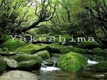 ~世界自然遺産の島~