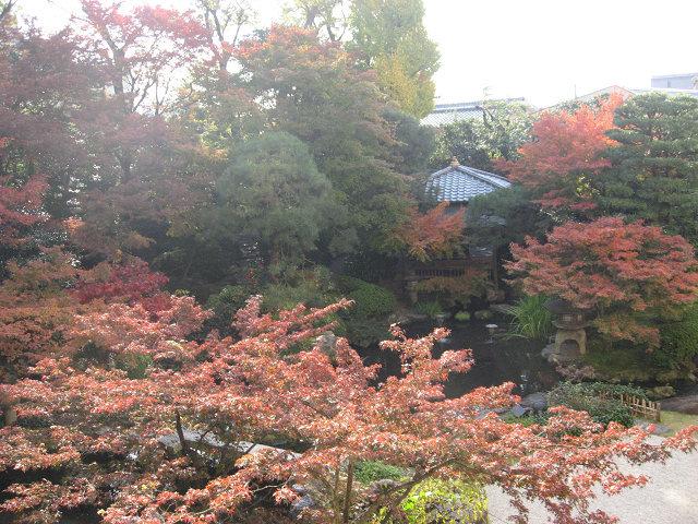 館内庭園3