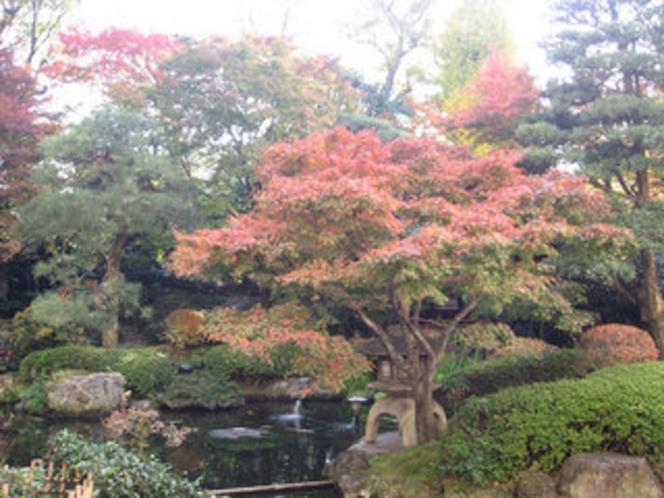 館内庭園2