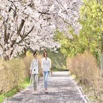春の海の京都「丹後・天橋立へ」
