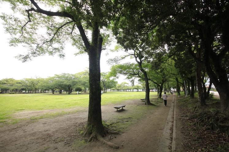 宮崎中央公園