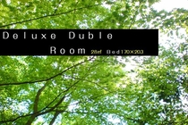 DeluxeDuble