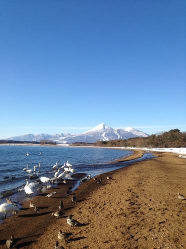 猪苗代湖の冬景色(猪苗代町)