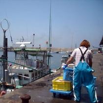 楽天和具漁港1500