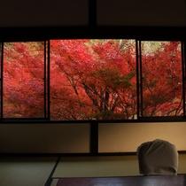 ◆紅葉時期の風景◆