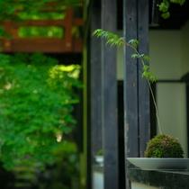 ◆東館外庭◆