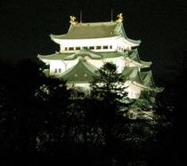 【近隣】夜の天守閣(徒歩5分)