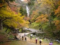 神庭(かんば)の滝