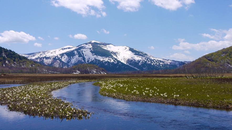 尾瀬国立公園 早春の尾瀬ヶ原