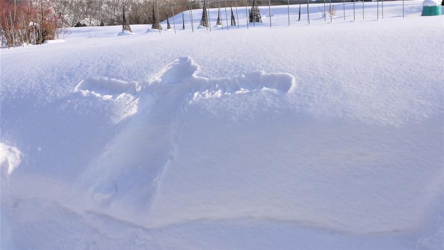 屋外・雪を楽しもう