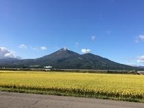磐梯山と稲穂