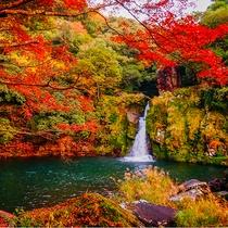 美しい紅葉が望める【観音滝】までは車で50分