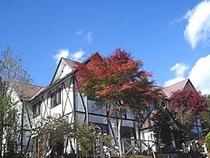 秋、紅葉のポンドテェイル外観