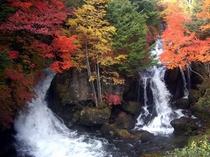 奥日光・竜頭ノ滝の紅葉