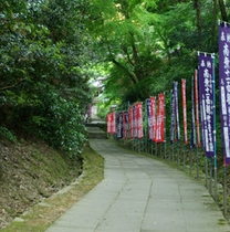 緑の中の参道