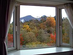 ツインからの眺め(秋)