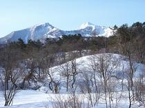 部屋からの眺め(冬)