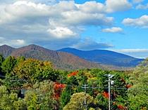 和室からの眺め(秋)