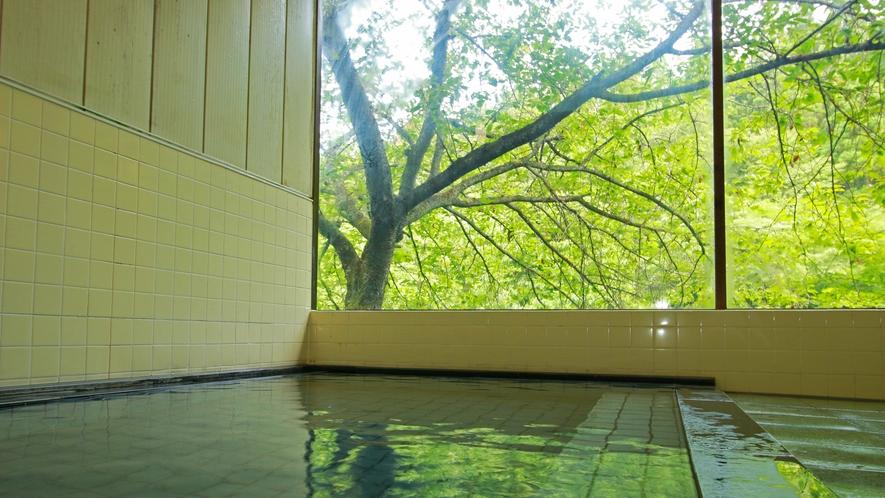 ■滝ノ原温泉 大きな窓からは銀桜、新緑、紅葉、雪景色と四季の風情を楽しめます